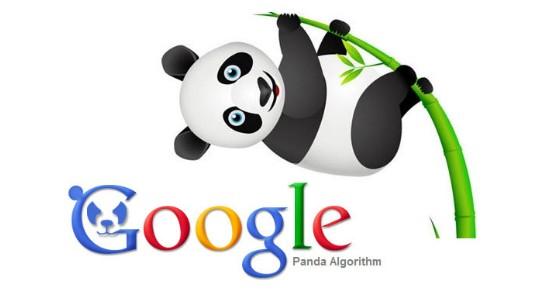 google panda y el contenido de calidad